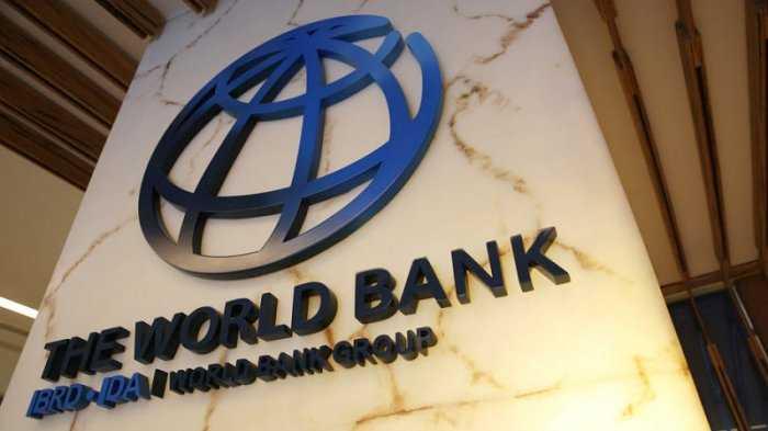 Bank Dunia Sayangkan Hanafi Rais, Anak Amien Rais
