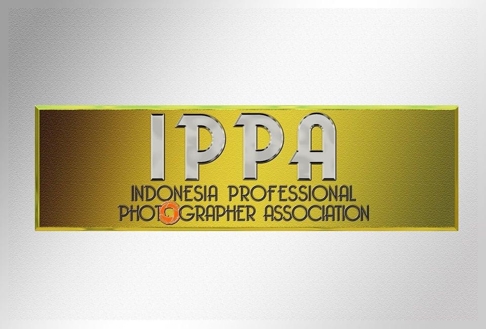 Repost: Catatan Jurufoto, Fotografer Profesional Indonesia