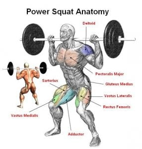 Power-Squat-front-combined