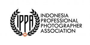 Logo Organisasi IPPA Bertransformasi