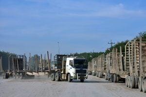 Sejumlah pekerja memarkir truk angkut kayu yang kosong di area Estate Pelalawan PT Riau Andalan Pulp and Paper (RAPP) di Kabupaten Pelalawan, Riau, Jumat (20/10).