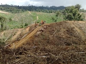 truck_and_heavy_machinery_in_clearing_operation_in_btp_landscape