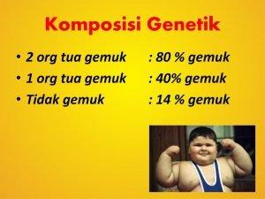Tidak gemuk : 14 % gemuk.
