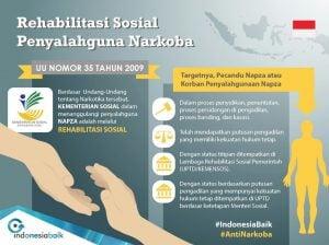 infografis_3_penyalahgunaan_narkotika
