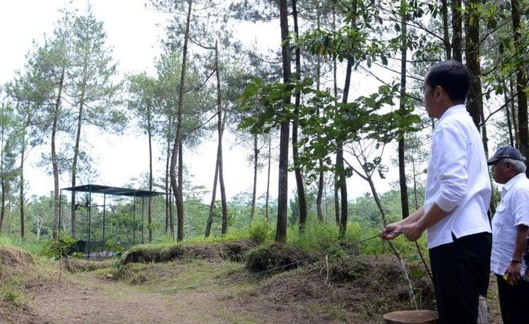 Penanaman Pohon Serentak Di Kawasan Taman Nasional Gunung Merapi