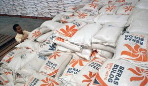 Petugas Badan Urusan Logistik (Bulog) saat memeriksa stok beras di Gudang Bulog kawasan Paron, Kabupate