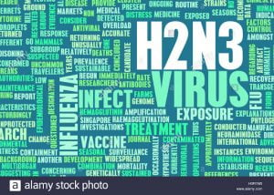 Jenis Virus Korona Baru?