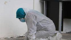 Imunologi Awam Serangan Virus